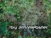 #Read The latest release from #Author Jim Webster – WAR 2.2
