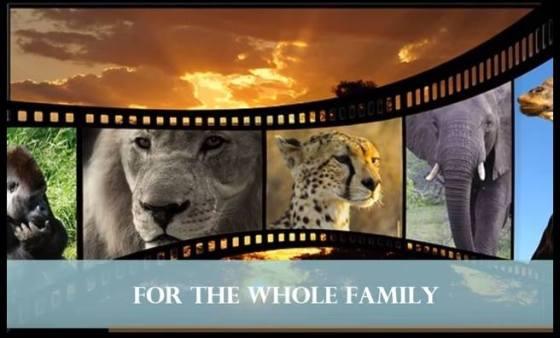 anna trailer for africa