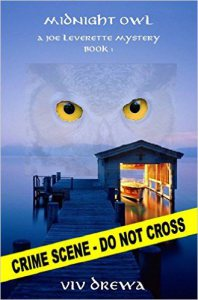 Midnight Owl by Viv Drewa