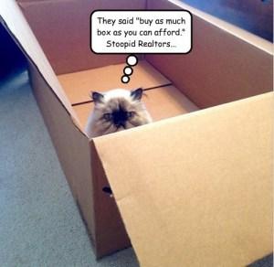 Buy Box