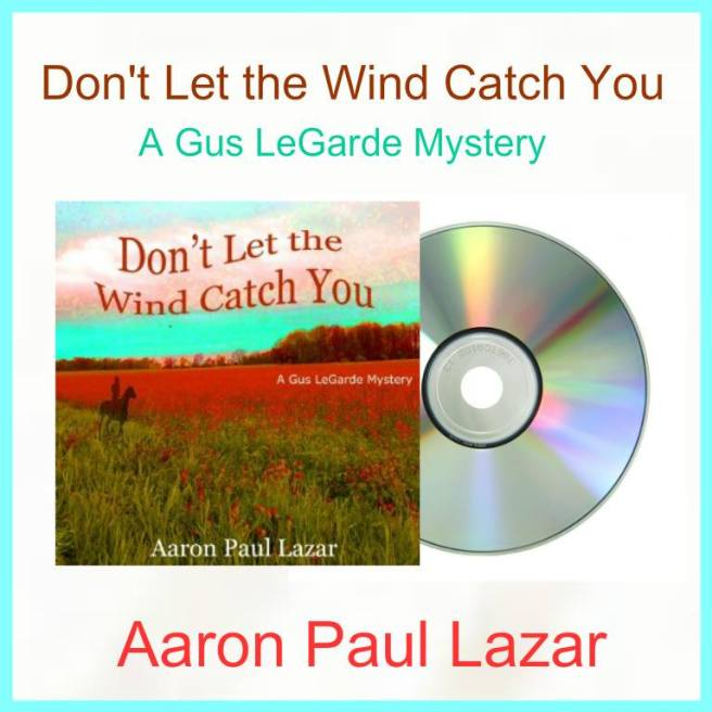 aaron audio dont let the wind catch you