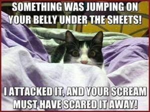 Something Was Jumping