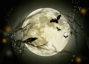halloween-1351523573k4k