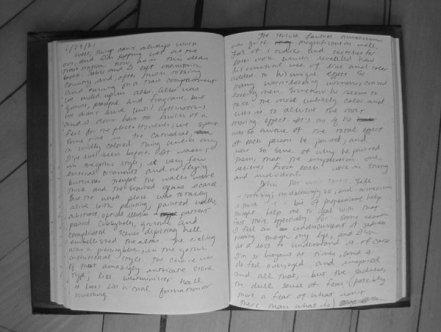 Jennifer Egan Diary.jpeg