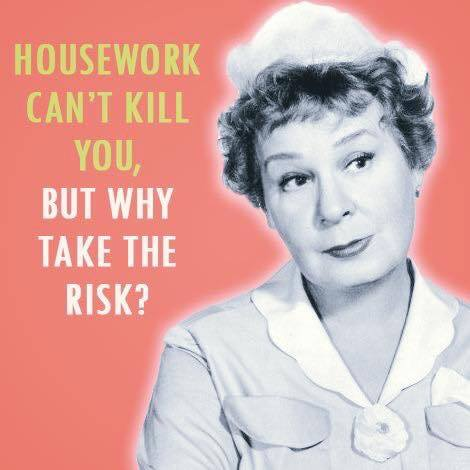 slob, humor, housework meme