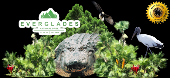 Ger everglades with alligator.png