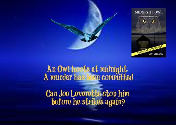midnight owl.jpg