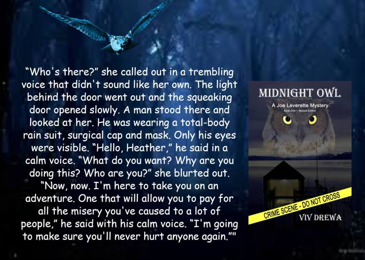 Viv midnight owl teaser.jpg