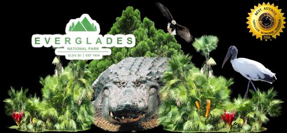 Ger everglades with alligator