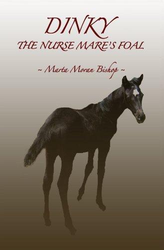 Marta dinky the nurse mare's foal