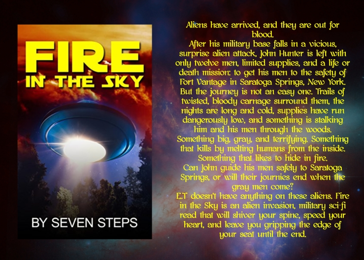 Seven fire in the sky blurb.jpg