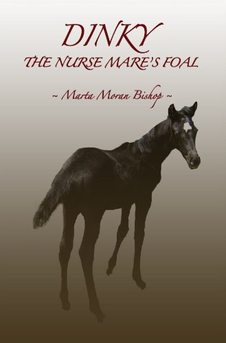 Marta dinky the nurse mare's foal.jpg