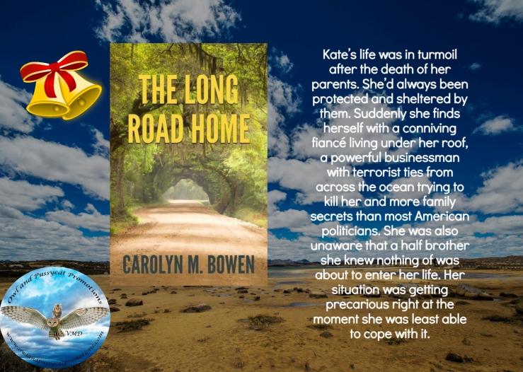 Carolyn long road home Christmas.jpg