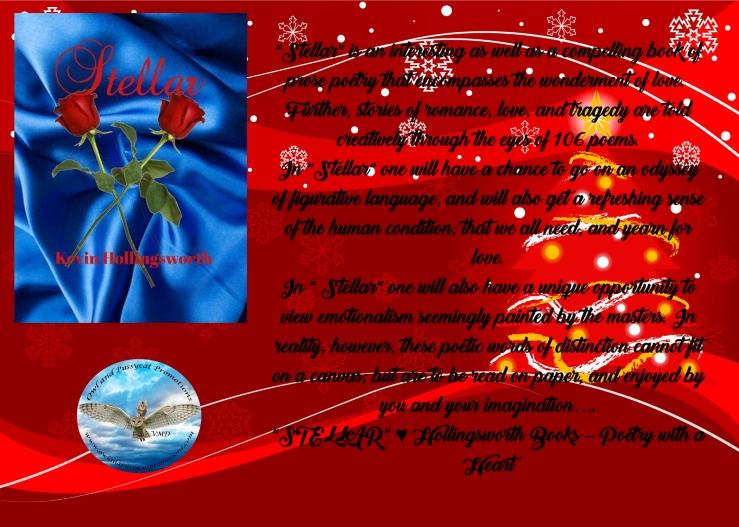 Kevin stellar Christmas
