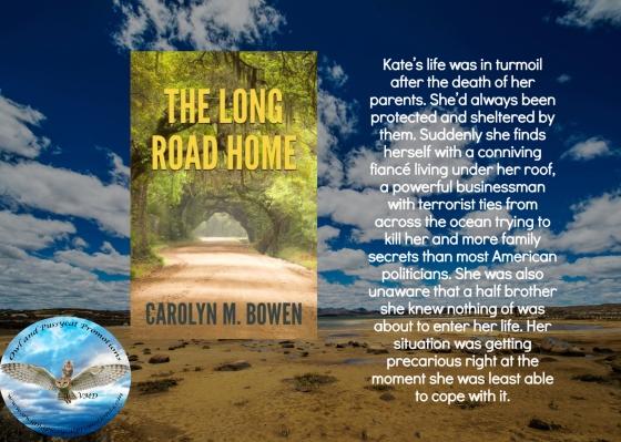 Carolyn long road home blurb 2