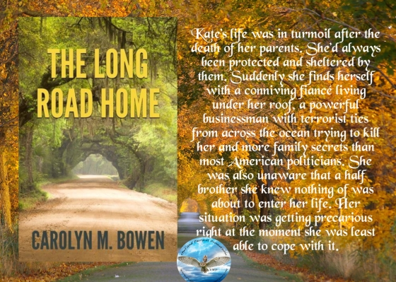 Carolyn long road home blurb.jpg