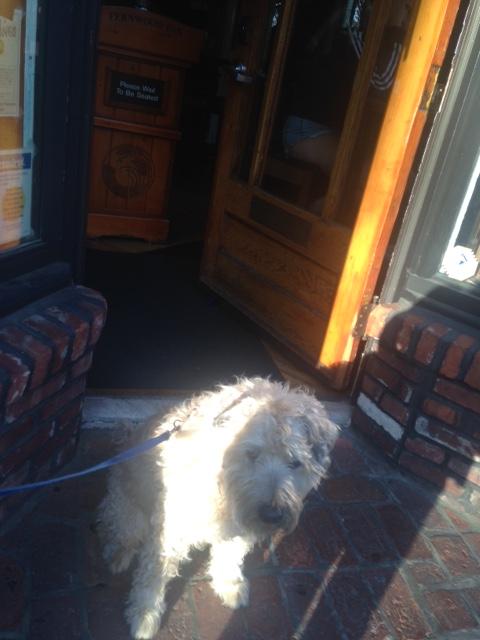 Farley at pub