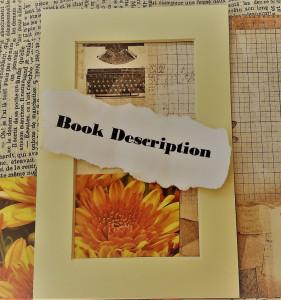 Book description