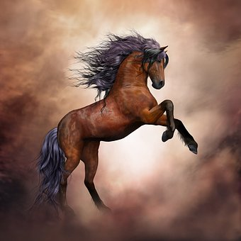horse-3139429__340