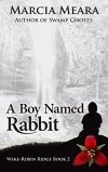 A Boy Named Rabbit by @MarciaMeara #BookReview #Suspense