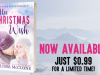 Carly Bishop loved Christmas…until tragedy struck… His Christmas Wish by @MelissaMcClone #NewRelease #HolidayRomance @PureTextuality