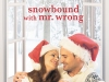 Worst. Day. Ever… Snowbound with Mr. Wrong by @BarbaraWDaille #HolidayRomance #BookBoost