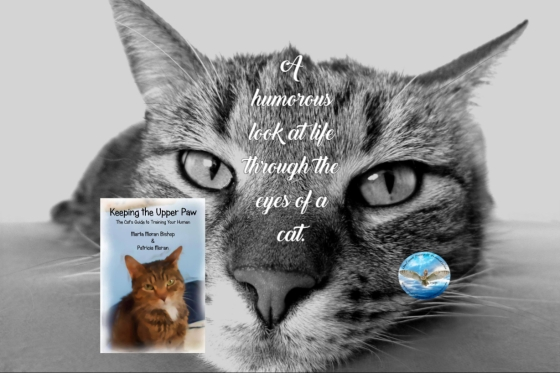 Marta cat guide to training your human 6-4-18.jpg