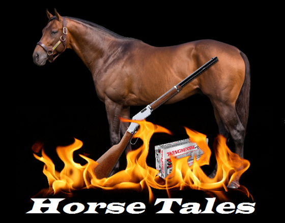 Ger horse tales with gun