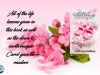 """""""I thoroughly enjoyed all of the life lessons given in this book as well as the down to earth recipes Carol gave the readers"""" – Echo of Heartbreak, A Recipe for Life by Carol AnnKauffman"""