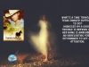 """Sweet, funny, engaging!"" – Garrett's Ghost by Award-Winning Author PamelaAckerson"